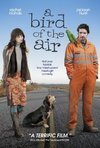 Subtitrare A Bird of the Air (2011)