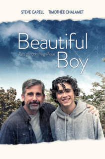 Subtitrare Beautiful Boy (2018)