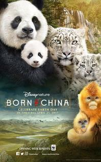 Subtitrare Born in China (2016)