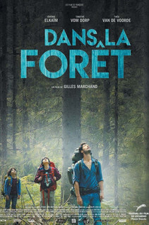 Subtitrare Into the Forest (Dans la forêt) (2016)